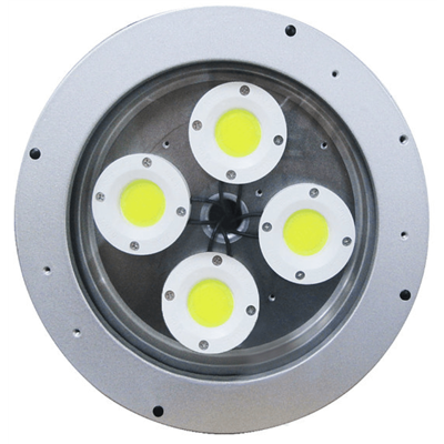 L1102 (COB) Hazardous Location LED Light with IP Camera